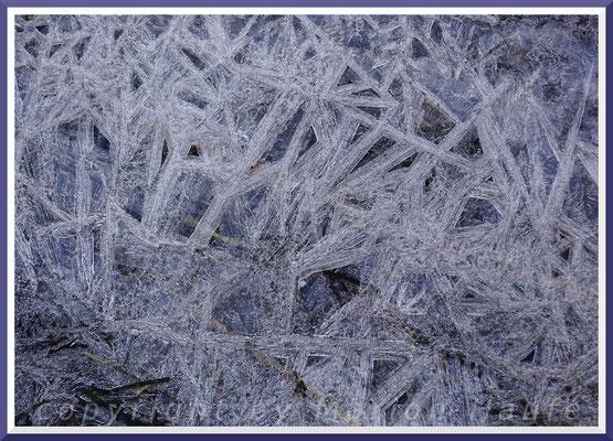 Eiskristalle am Prerower Nordstrand, Februar 2018