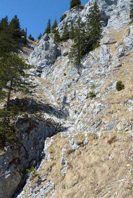 Abstieg Mairalm-Steig