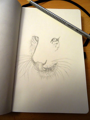 Skizzenbuch: 5. Skizze Tiger WIP