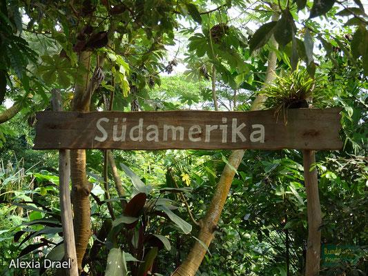 Südamerika findet ihr im Gondwanaland.