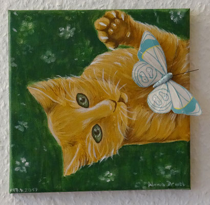 Katzling, 20x20 cm Leinwand, Acryl, Schmetterling