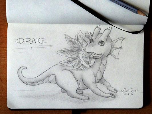 Skizzenbuch: 16. Skizze Drake