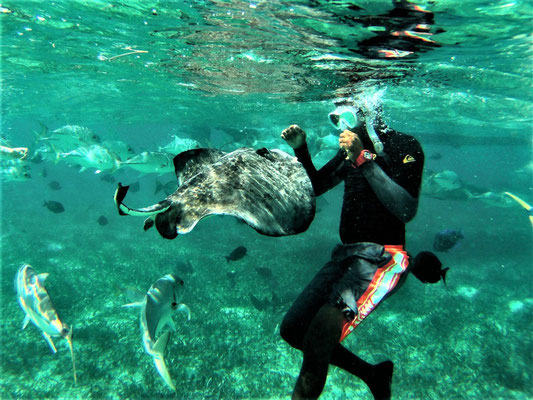 Schnorcheln Caye Caulker, Belize