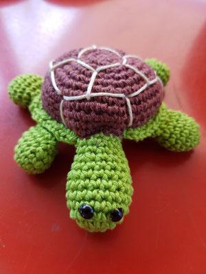 Siggi die Schildkröte