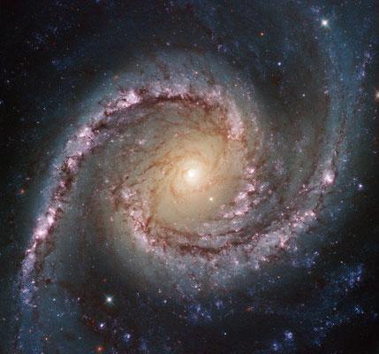 NGC1566 par le télescope spatial Hubble