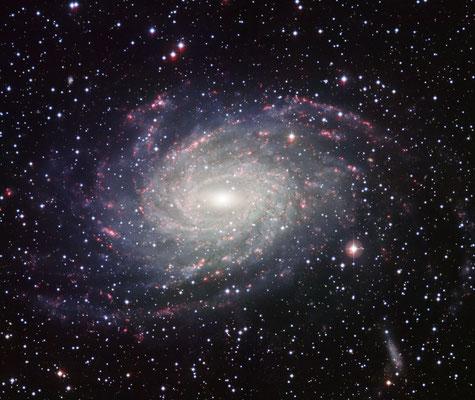 NGC6744 par le télescope de 2,2 m de La Silla (ESO)