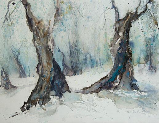 Regina Wuschek, Ölbäume im Winter, Aquarell