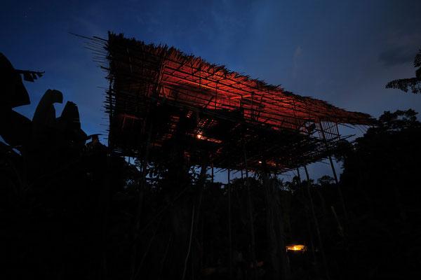 """""""Weihnachtsstimmung"""" nahe Mabul - im Dschungel von Neuguinea"""