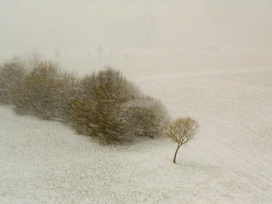 Poetische Photographie Frank Hohl