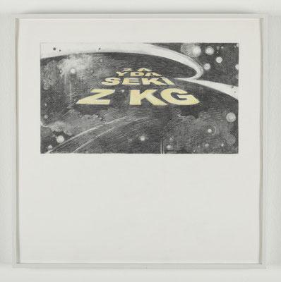 'Space Track I' (İki Haftada Sekiz Kilo) 50x50cm, 2010
