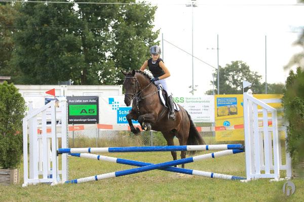Elisha - Foto: Horsefotograf.ch
