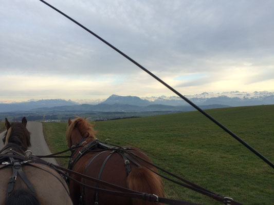 Ausfahrt in Römerswil mit wunderschöner Aussicht