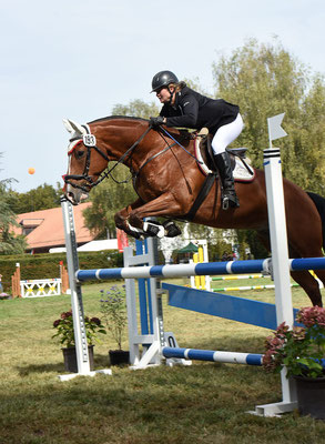 Navaro am Final in Avenches 2018 - Foto: Photoprod.ch