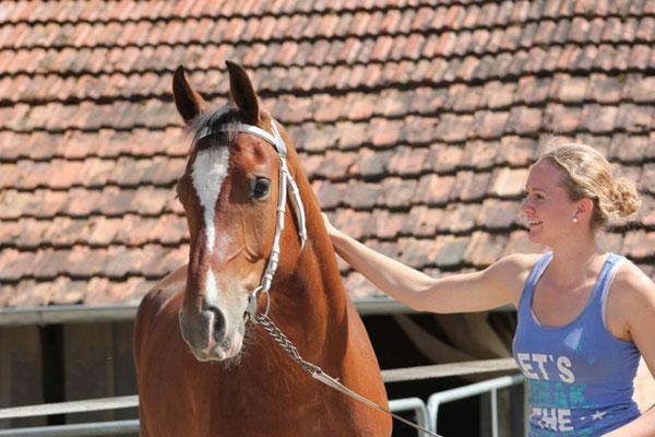 Vertrauen sowie ein lockeres zufriedenes Pferd - Foto: Jenny Commons
