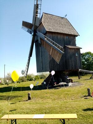 Die Mühle bei Sonnenschein.