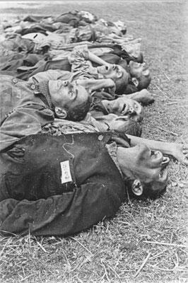 Häftling 127482 Aria Niesenbaum (Jude)  geb. 20.7.1908 in Lublin, gekommen aus Sachsenhausen. gestorben am 23.4.1945  Archiv Deiler