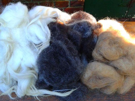RohwollWorkshop: Wolle kardieren