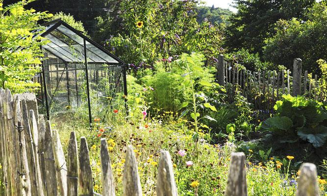 Garten davor