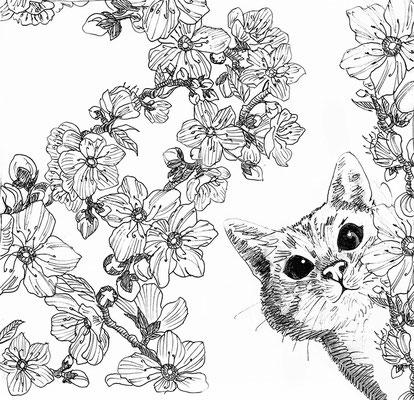 Jussat (Chanonat) - L'amandier de la rue Saint-Julien est en fleurs