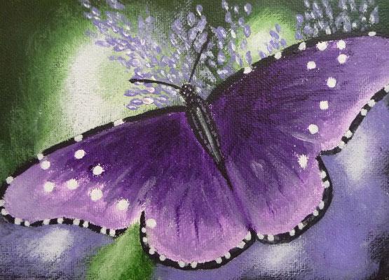 Vlinder paars 13x18
