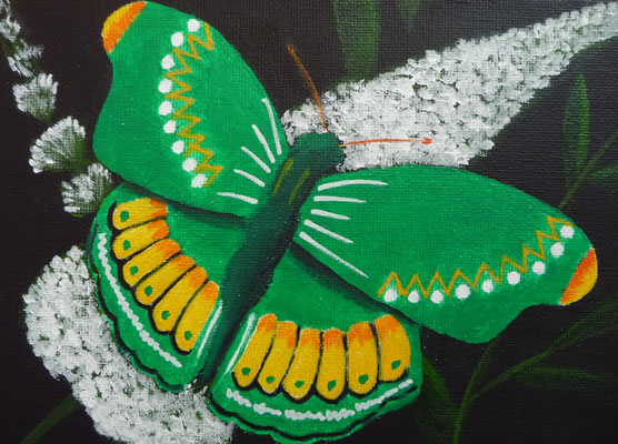 Vlinder groen 13x18