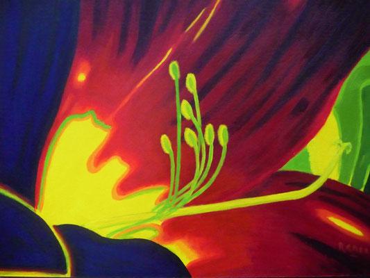 Flower, 2014  40x50