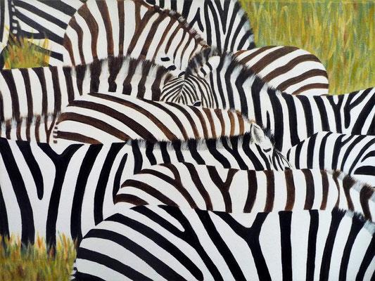 Zebra's, 2014  40x50