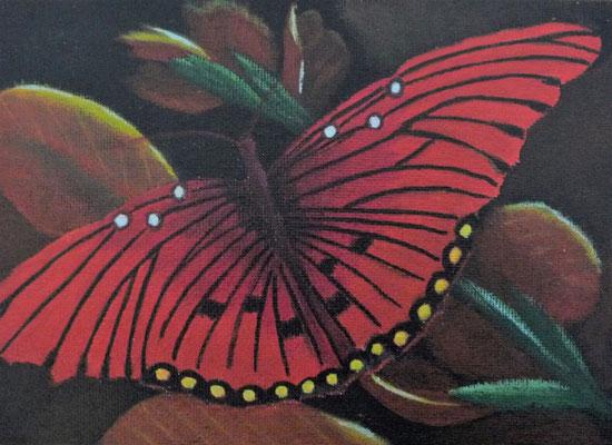Vlinder rood 13x18
