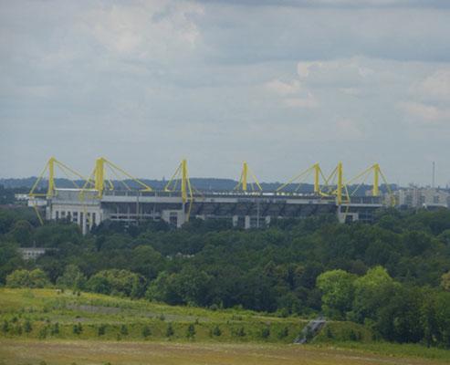 Signal-Iduna-Stadion  Rundfahrt Stadtführung  Fussball Fieber Dortmund