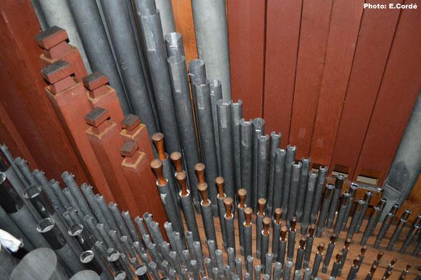 Détail de la tuyauterie du Swell, au fond les basses du Violin Diapason 8', suivi du rang du Violin Diapason 8', puis le rang du Lieblich Gedackt 8', suivi de la Fourniture 3rgs