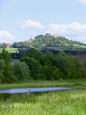"""Foto: Krista Schulte - """"Lengfelder Seeenplatte"""" (Biber-Teich) vor der Veste"""