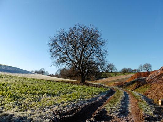 Foto: Tanja Keßler - Winter in Ober-Klingen