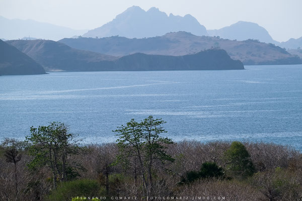 Isla de Komodo / Komodo island. Nusa Tenggara. Indonesia 2018