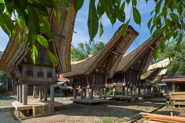 Tongkonans. Arquitectura popular / Popular architecture. Ke'te Kesu. Tana Toraja. Sulawesi. Indonesia 2018