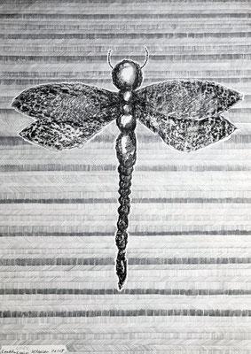 KAPUZINER-DEMOISELLE, KLAUSEN        Graphit und Ölkreide auf Papier - 70 x 29 cm