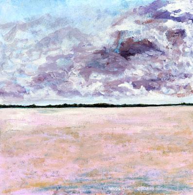 DE WIJDE BLIK 1 Acryl und Tusche auf Leinwand - 40 x 40 cm