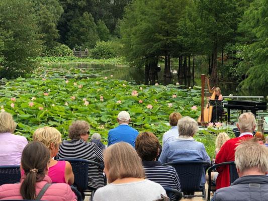 Norddeutsche Gartenschau - Arboretum Baumpark Ellerhoop - Thiensen - Foto: Petra Schweim