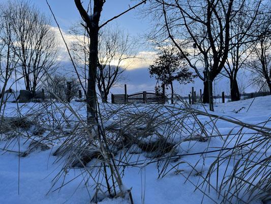 Foto: Petra Schweim - Februar - die blaue Stunde auf dem 'Appelbarg'