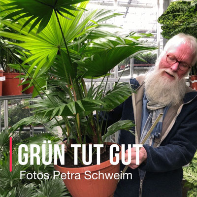 Foto: Petra Schweim - Grün tut gut