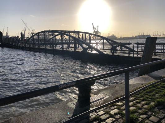 Der Blick aus der Fischaktionshalle an der Elbe