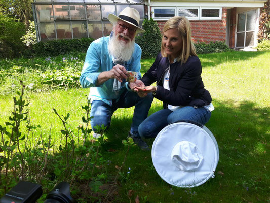 Blume des Jahres - im Loki Schmidt Garten mit Myriam Kagerah (Sparda-Bank)
