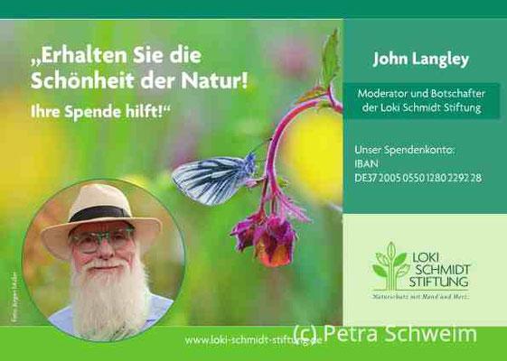 """Bücherhallen Hamburg und der Lange Tag der StadtNatur Hamburg zu """"Hamburg blüht auf!"""" -  Zoom-Konferenz für Naturfreund*innen"""