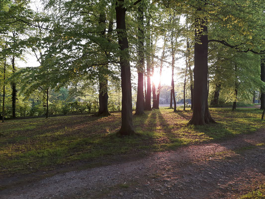Gartenfestival auf dem Beekenhof - Foto: P.S.