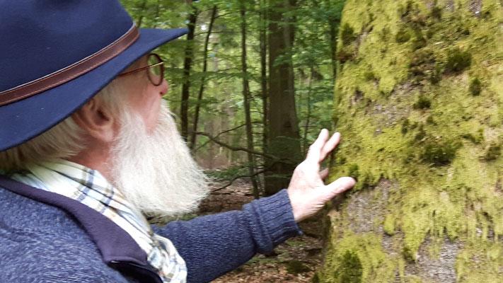 Foto: Petra Schweim - Bäume umarmen ist Liebe zur Natur.
