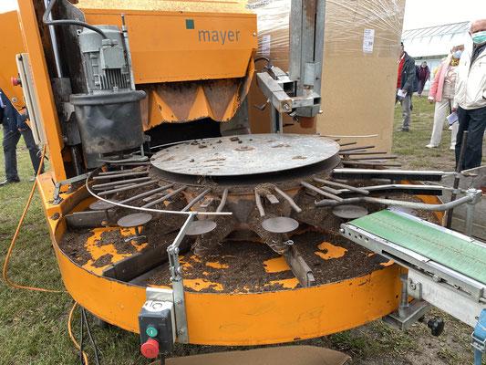 Topfmaschine ist eine Maschine, mit deren Hilfe Pflanzen halbautomatisch ein- und umgetopft werden.Foto: Petra Schweim