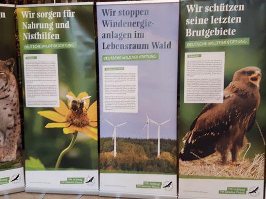 Senatsempfang 25 Jahre Deutsche Wildtierstiftung - Foto: P.S.