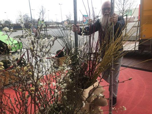 Blühende Zweige sind der inbegriff für Frühlingserwachen und GUTE LAUNE.