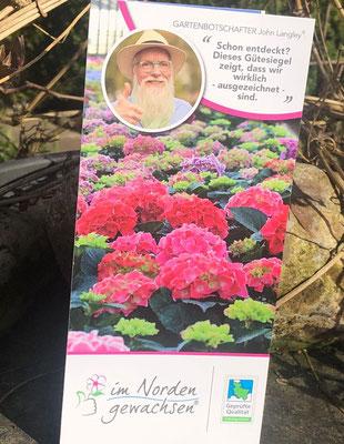 Foto: Petra Schweim - Gütezeichen SH für Zierpflanzen aus der Region - im Norden gewachsen®