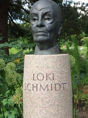 2011 - 2021 - In diesem Jahr wurde ich von der Loki-Schmidt-Stiftung offiziell zu deren Stiftungs-Botschafter ernannt – für mich eine besondere Anerkennung. Bin gern mit dem Team - soweit wie möglich - aktiv.