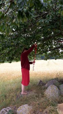 Petra Hinze Frauenwissen und Schamanismus: Ritual Kraft der Gebärmutter
